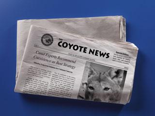 Coyote Factsheet for Communities