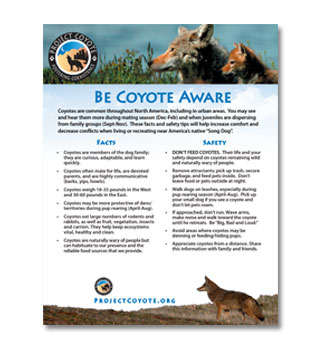 Be Coyote Aware Flyer