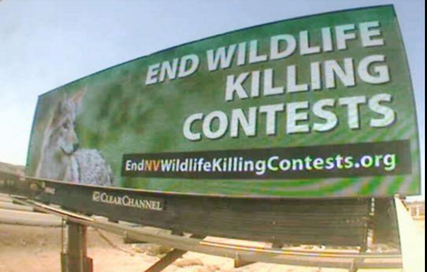 end wildlife killing contests